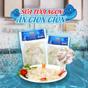 Viet Nam Jellyfish